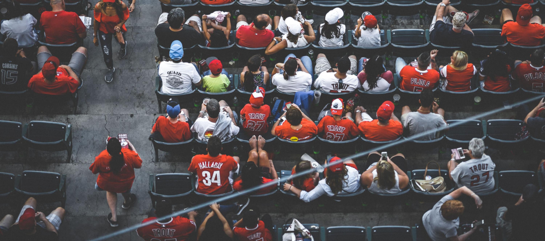 Sports fan hero