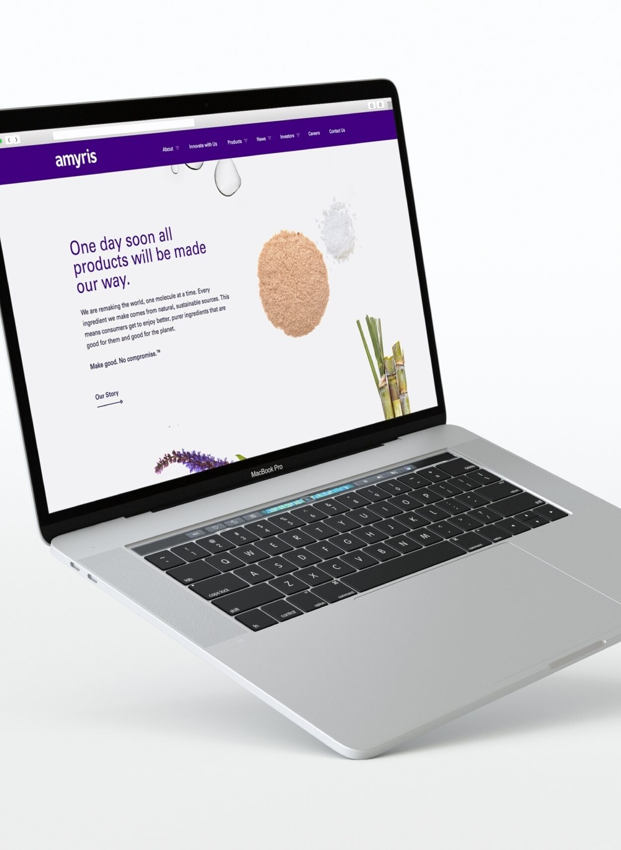 Amyris Case Study Website