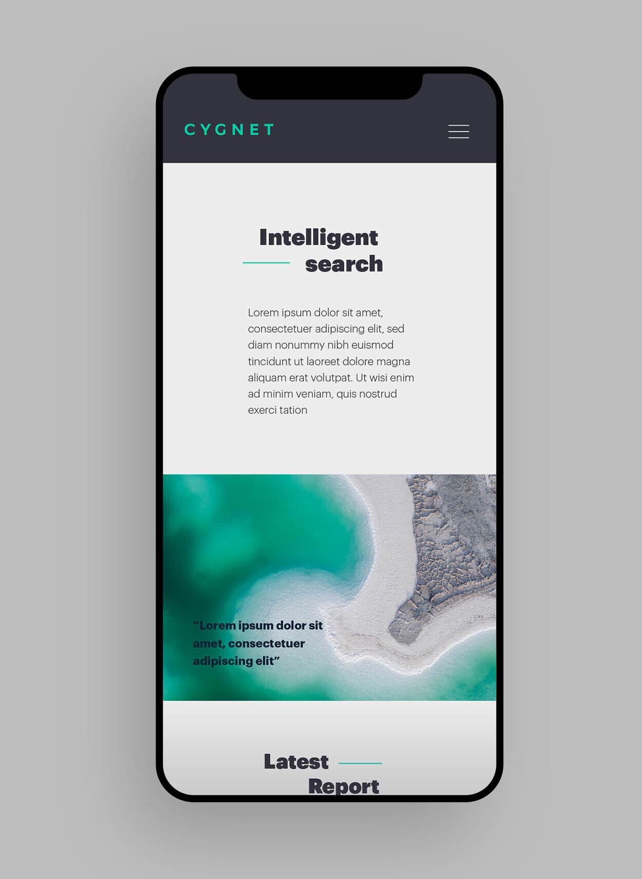 12 Cygnet 1250x1710